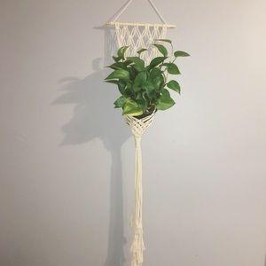 Macrame Plant Hanger 51 inches long